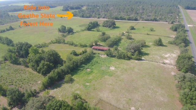 3253 NE County Road 337, Bronson, FL 32621 (MLS #559504) :: Bosshardt Realty