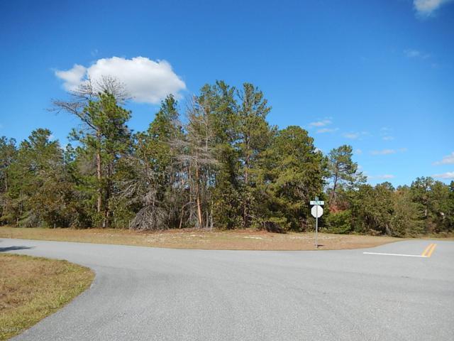 0 SW 161st Place Road, Ocala, FL 34473 (MLS #559509) :: Bosshardt Realty