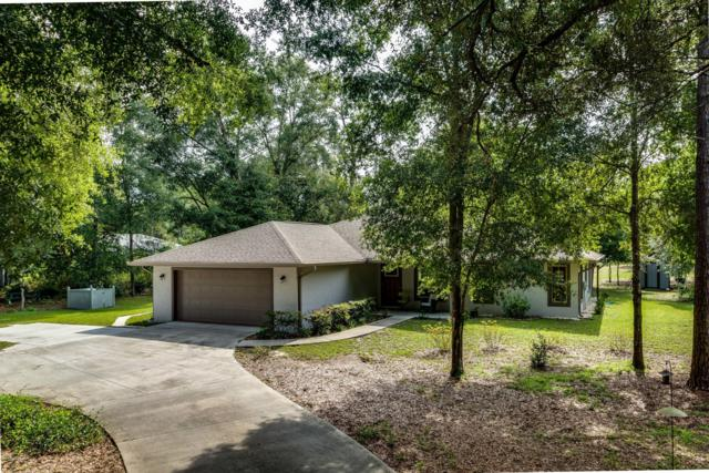 10058 SW 202nd Circle, Dunnellon, FL 34431 (MLS #559536) :: Pepine Realty