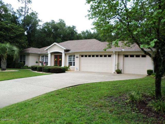 10273 N Athenia Drive, Citrus Springs, FL 34434 (MLS #559546) :: Bosshardt Realty