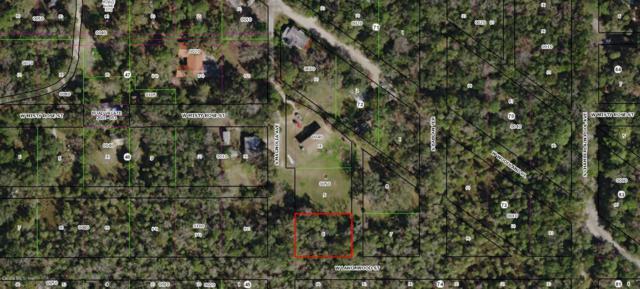 5761 S Magnolia Avenue, Homosassa, FL 34448 (MLS #559548) :: Bosshardt Realty