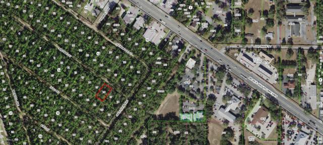 2409 Shepard Street, Inverness, FL 34453 (MLS #559556) :: Bosshardt Realty