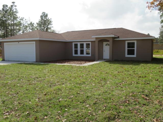 6895 SE 123RD Place, Belleview, FL 34420 (MLS #559568) :: Pepine Realty