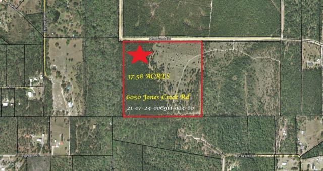 6050 Jones Creek Road, Keystone Heights, FL 32656 (MLS #559648) :: Pepine Realty