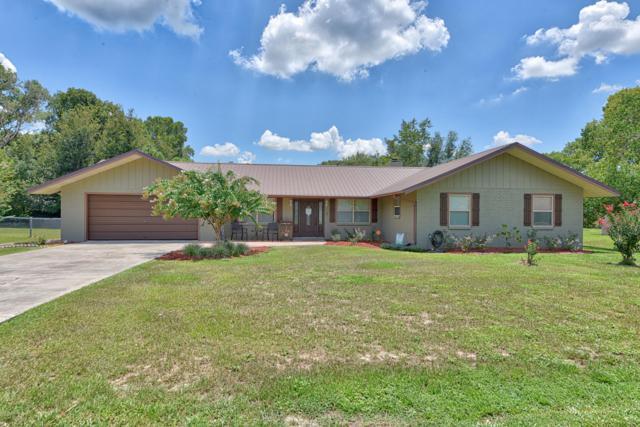 1861 SE 56th Court, Ocala, FL 34480 (MLS #559805) :: Bosshardt Realty