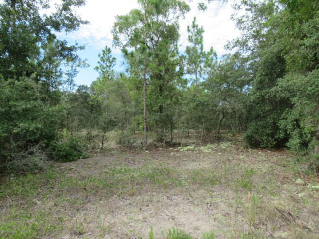 0 SW Marine Boulevard, Dunnellon, FL 34431 (MLS #559867) :: Realty Executives Mid Florida