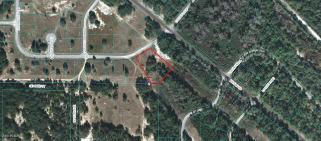 TBD Locust Loop Circle, Ocala, FL 34472 (MLS #559915) :: Realty Executives Mid Florida