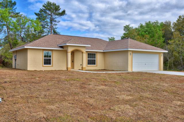 16328 SW 16th Court, Ocala, FL 34473 (MLS #559918) :: Realty Executives Mid Florida