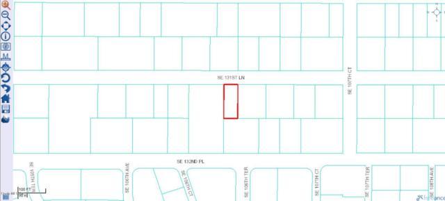 0 SE 131st Lane, Ocklawaha, FL 32179 (MLS #559932) :: Bosshardt Realty