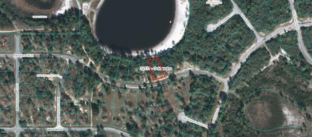 TBD Malauka Trace, Ocklawaha, FL 32179 (MLS #559953) :: Realty Executives Mid Florida