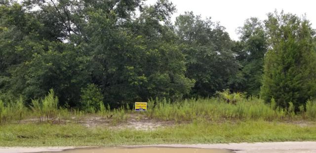 8639 N Reina Loop, Crystal River, FL 34428 (MLS #560023) :: Pepine Realty