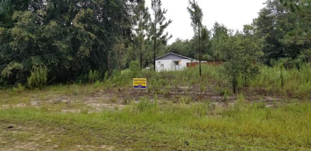 8562 N Reina Loop, Crystal River, FL 34428 (MLS #560026) :: Bosshardt Realty