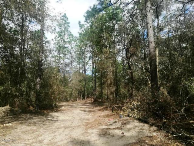 00 SW 57th Place, Dunnellon, FL 34432 (MLS #560216) :: Bosshardt Realty