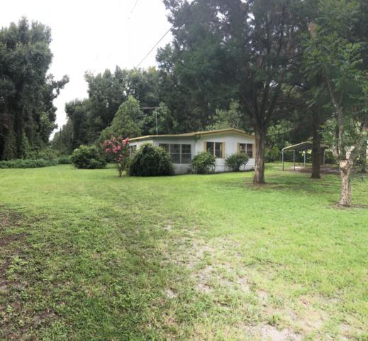 3489 E C-466, Oxford, FL 34484 (MLS #560478) :: Bosshardt Realty