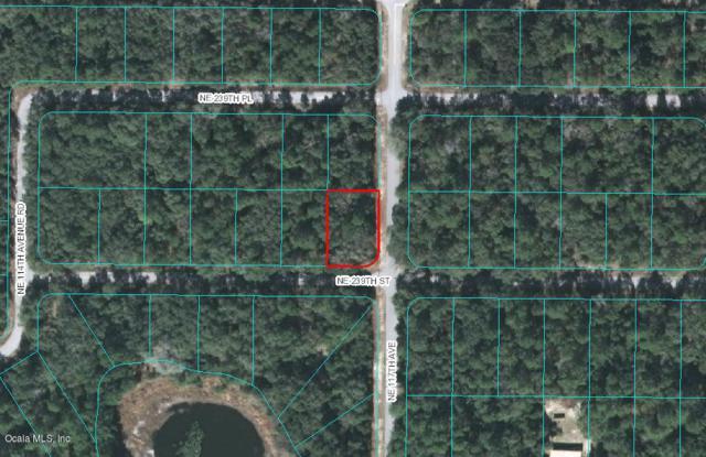 TBD NE 239 Street, Fort Mccoy, FL 32134 (MLS #560506) :: Bosshardt Realty