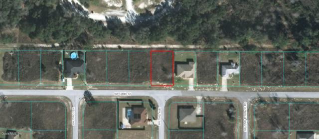 000 SW 128th State Road, Ocala, FL 34473 (MLS #560539) :: Bosshardt Realty