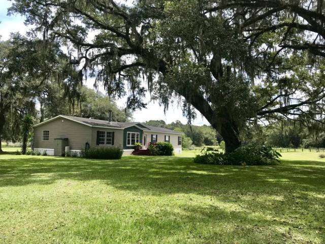 18831 SE 30th Street, Morriston, FL 32668 (MLS #560669) :: Realty Executives Mid Florida