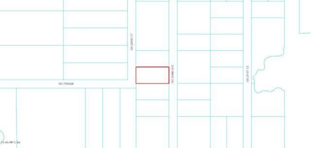 0 SW 202nd Avenue, Dunnellon, FL 34431 (MLS #560692) :: Pepine Realty