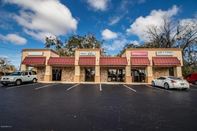 1913 NE 14th Street Street, Ocala, FL 34470 (MLS #560742) :: Pepine Realty