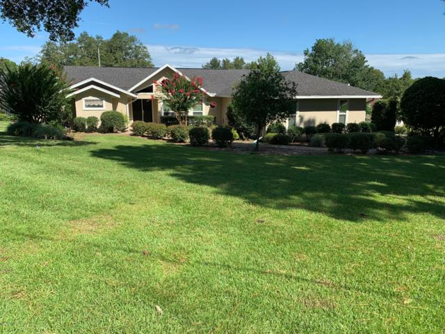 7575 NW 56th Place, Ocala, FL 34482 (MLS #560811) :: Bosshardt Realty