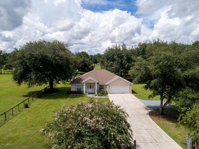 2475 SE 157 Lane Road, Summerfield, FL 34491 (MLS #560818) :: Pepine Realty