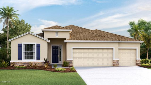 4534 SW 65th Place, Ocala, FL 34474 (MLS #560957) :: The Dora Campbell Team