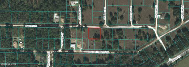 15180 SW 38th Place, Ocala, FL 34481 (MLS #561003) :: Bosshardt Realty