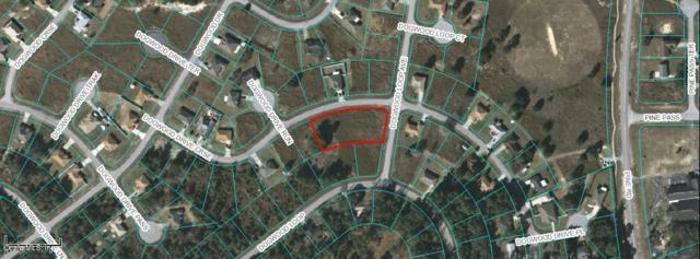 TBD Dogwood Drive Course, Ocala, FL 34472 (MLS #561017) :: Pepine Realty