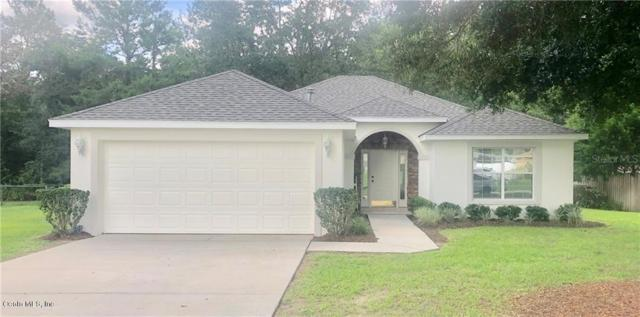 6615 SE 11th Loop, Ocala, FL 34472 (MLS #561038) :: Bosshardt Realty