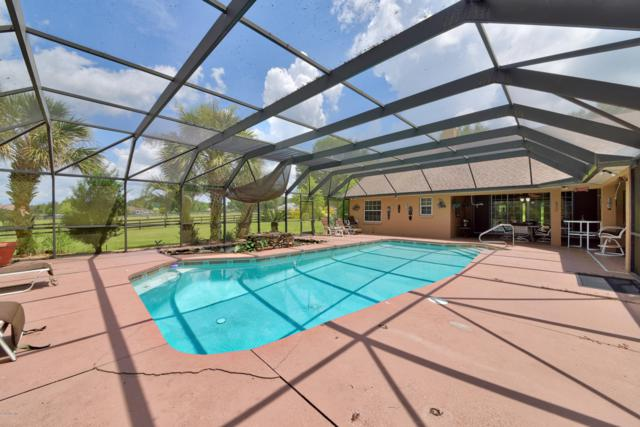 2060 NW 114th Loop, Ocala, FL 34475 (MLS #561045) :: Realty Executives Mid Florida