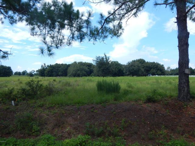 TBD SE 66th Place, Morriston, FL 32668 (MLS #561058) :: Bosshardt Realty