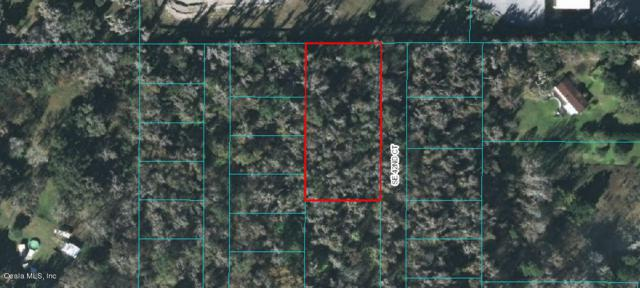 TBD SE 42nd Court, Belleview, FL 34420 (MLS #561060) :: Realty Executives Mid Florida