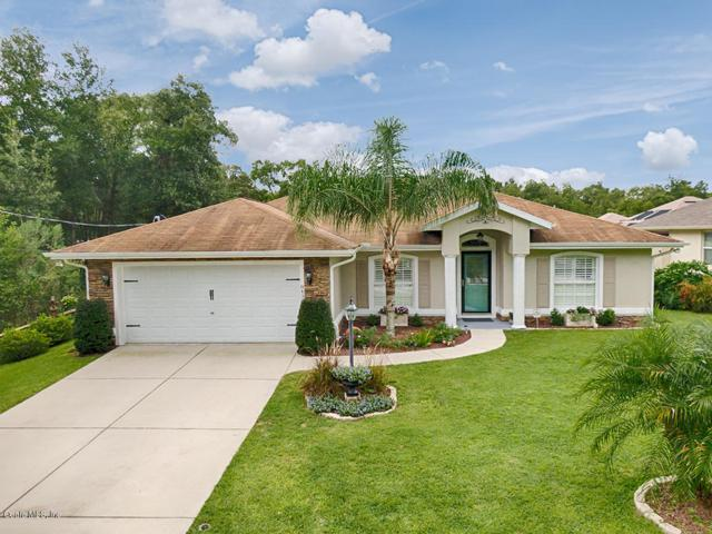 8430 SE 162 Nd Street, Summerfield, FL 34491 (MLS #561061) :: Realty Executives Mid Florida