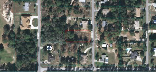 00 SW 203rd Court, Dunnellon, FL 34431 (MLS #561121) :: Pepine Realty
