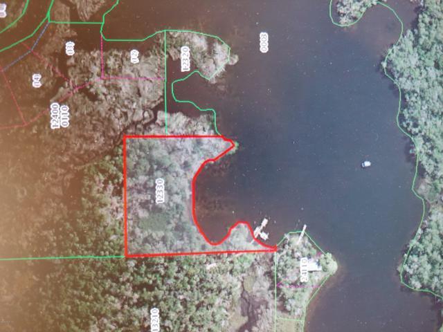 13225 The Homosassa River, Homosassa, FL 34448 (MLS #561132) :: Bosshardt Realty
