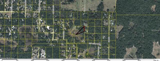 00 SW 42nd Terrace, Webster, FL 33597 (MLS #561147) :: Bosshardt Realty