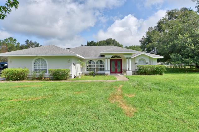 13 Wintergreen Way, Ocala, FL 34482 (MLS #561154) :: Pepine Realty