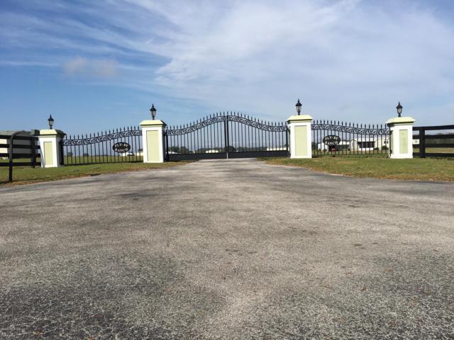 10480 County Road 237, Oxford, FL 34484 (MLS #561160) :: Bosshardt Realty