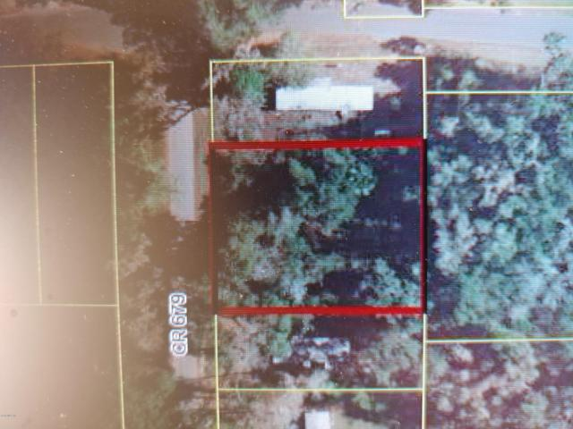000 Cr 679, Webster, FL 33597 (MLS #561167) :: Bosshardt Realty