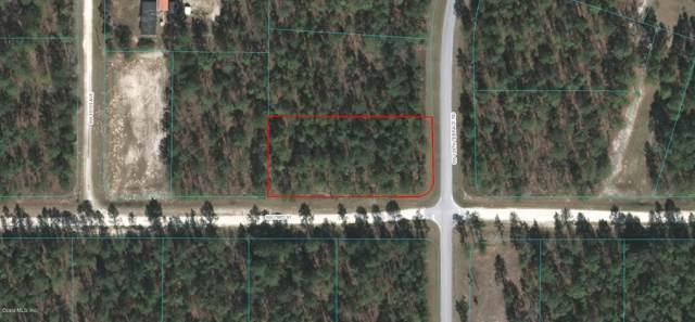 0 SW 129 Terrace Road, Ocala, FL 34481 (MLS #562316) :: Bosshardt Realty