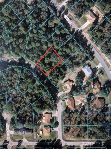 TBD Oak Pass Loop, Ocala, FL 34472 (MLS #562763) :: Realty Executives Mid Florida