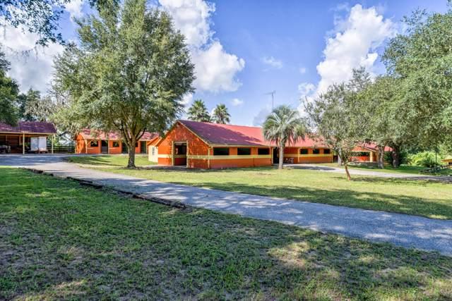 16921 SE 19th Court, Summerfield, FL 34491 (MLS #562793) :: Globalwide Realty