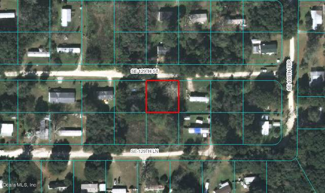 10900 SE 129th Street, Belleview, FL 34420 (MLS #562835) :: Pepine Realty