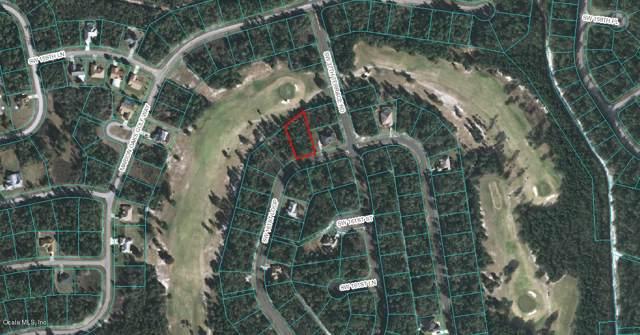 0 SW 161 Loop, Ocala, FL 34473 (MLS #562896) :: Bosshardt Realty