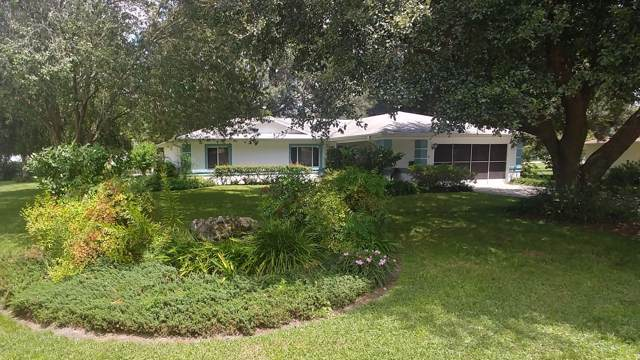 6106 SW 100th Loop, Ocala, FL 34476 (MLS #562967) :: Bosshardt Realty