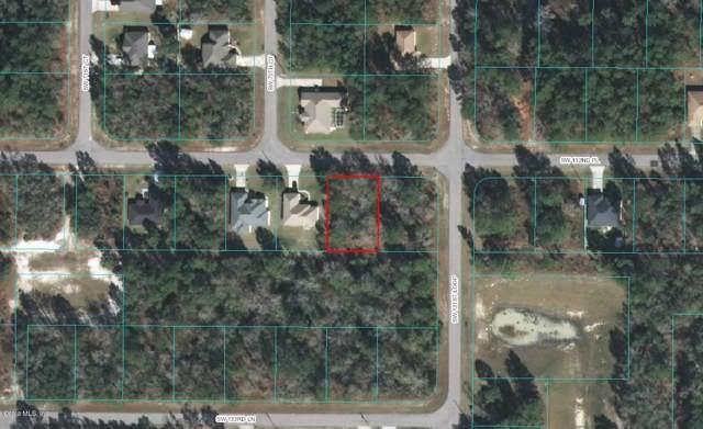 0 SW 132 Place, Ocala, FL 34473 (MLS #562995) :: Thomas Group Realty