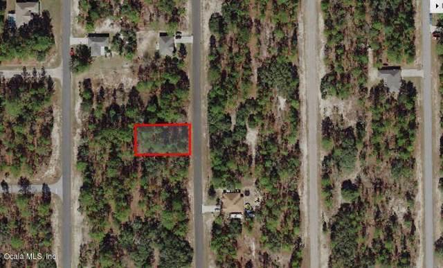 9856 N Santee Terrace, Citrus Springs, FL 34433 (MLS #563343) :: Bosshardt Realty