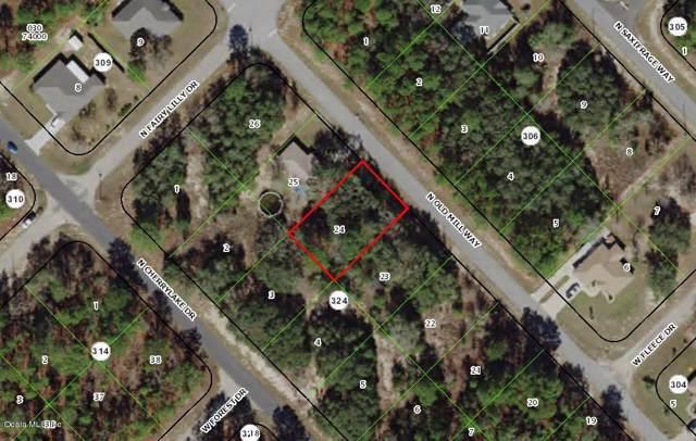 9498 N Old Mill Way, Citrus Springs, FL 34433 (MLS #563506) :: Bosshardt Realty