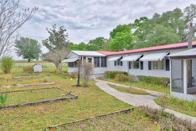 3980 SE 150th Street, Summerfield, FL 34491 (MLS #563511) :: Bosshardt Realty