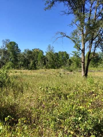 0 Court, Fort Mccoy, FL 32134 (MLS #563582) :: Bosshardt Realty